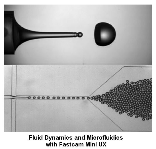 Microfluidics and Fluid Dynamics applications with the Fastcam Mini UX camera